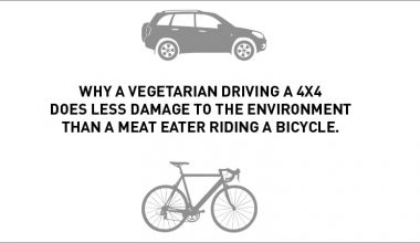 Vegetarians and the environment